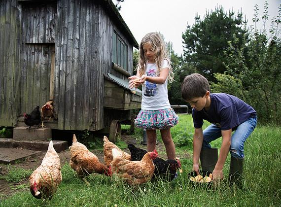 WEB_FRIENDLY_Fisherton_Farm_Vintage_Vardos_D46A3686_Andrew_Ogilvy_Photography.jpg