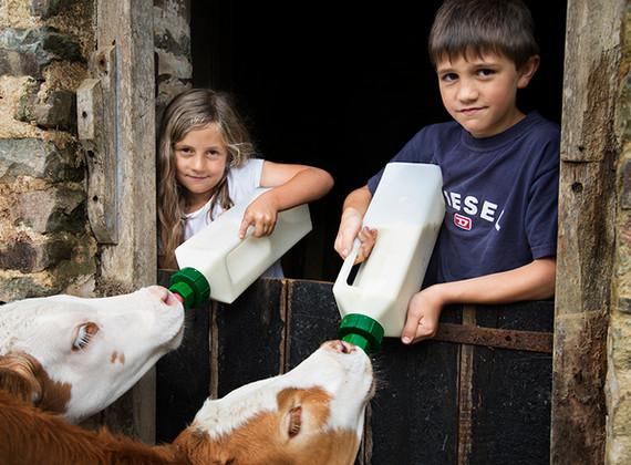 WEB_FRIENDLY_Fisherton_Farm_Vintage_Vardos_D46A3634_Andrew_Ogilvy_Photography.jpg