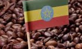 Ethiopia Yirgacheffe Koko Natural