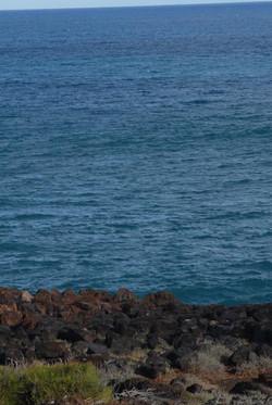 FSP_land_sea.jpg