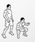 squat vector systema
