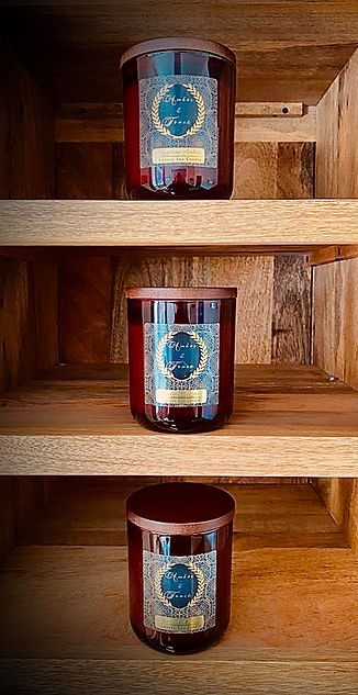 Amber & Tonic Candle Collection