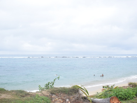 Costa Caribe continúa con fuertes vientos y mantiene alerta amarilla