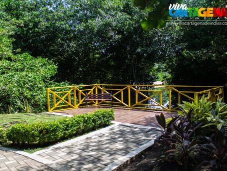 Cartagena  ratificó la apertura del parque 'Espíritu del Manglar'