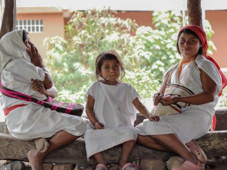 Alcaldía de Riohacha iniciará censo de la población indígena