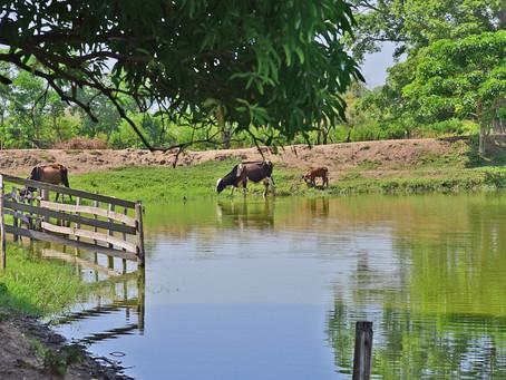 Abierta convocatoria para programa de jagüeyes y reservorios en el Atlántico