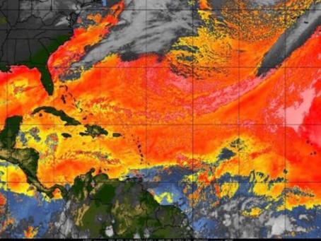 Polvo del Sahara llegaría al norte del Caribe
