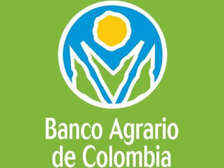 Empleados del Banco Agrario donan $150.000 a familias vulnerables