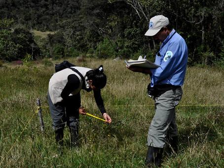 Abierta convocatoria para voluntariado en los Parques Nacionales Naturales de Colombia