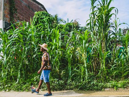 """""""Redescubre Bolívar""""  y turistea la ruralidad y la tradición Caribe"""