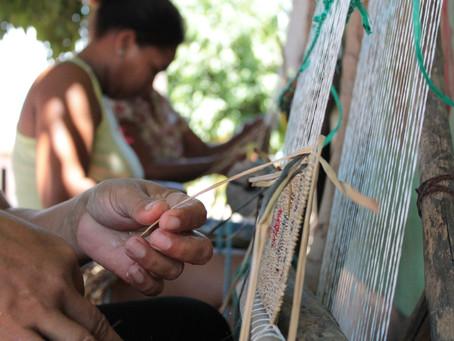 Guajira realizará los pagos a cultores a partir del 10 de julio