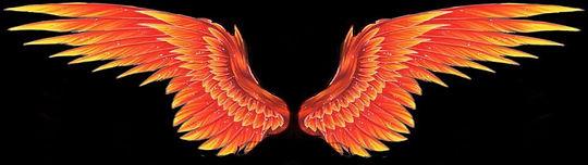 ph wings.JPG