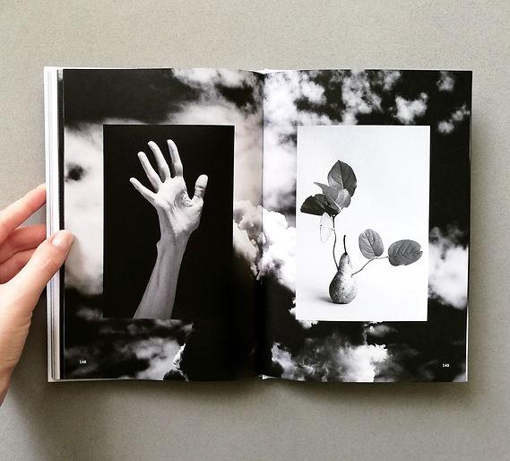 #שרון כץ רוה #שנה ד #עיצוב ספר #2019 #אפ