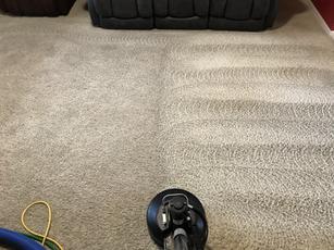 Carpet Agitator_Pattern_During Process.h