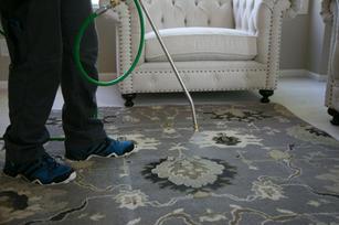 Area Rug_Cleaning_Spraying.jpg