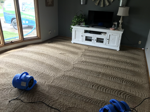 Carpet Cleaning_Residential_Drying