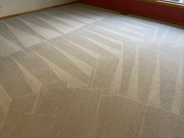 Carpet Cleaning_Finished Look