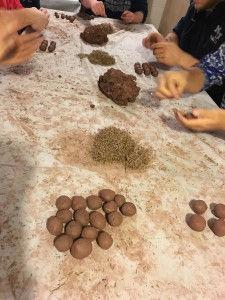 fazendo seed baal.jpg