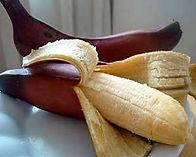 banana vermelha