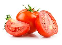 tomate cachorro