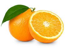 laranja cachorro