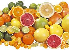 jejun citros