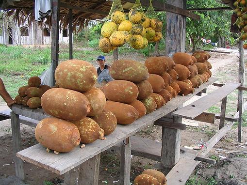 cupuaçu fruta