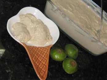 sorvete cambuci