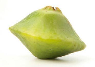 fruta cambuci