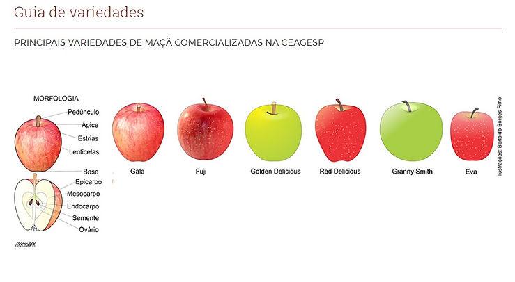 variedades de maçã