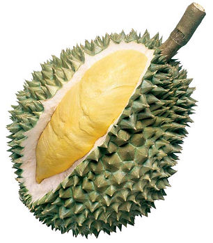 fruta durian