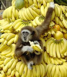 alergia banana