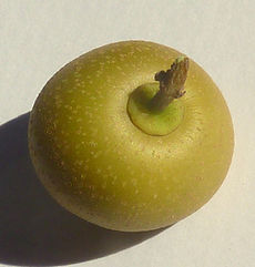 fruta jua