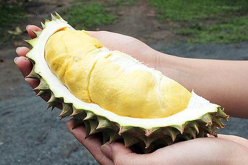 fruta fedida