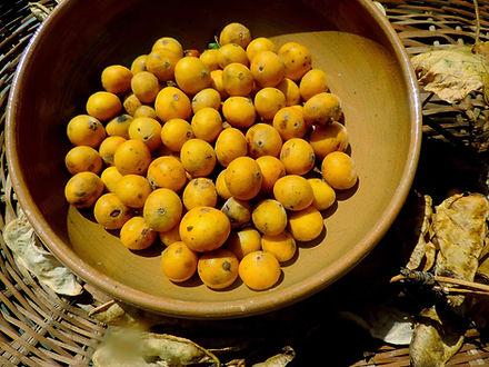 fruta peludinha