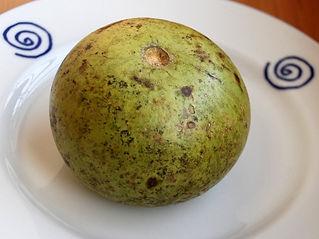 bael fruta
