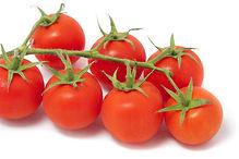 jejum tomate