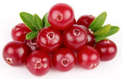 fruta Cranberry