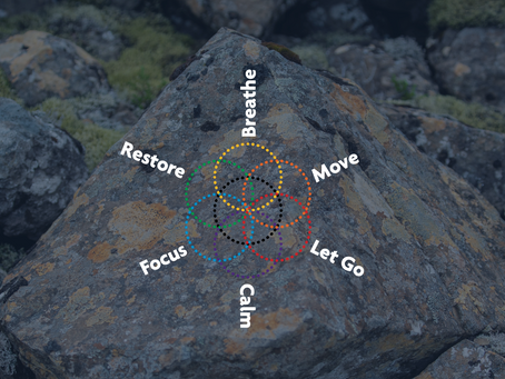 Go with the Six Modes of Flow