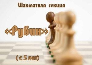 """Шахматная секция """"Рубин"""""""