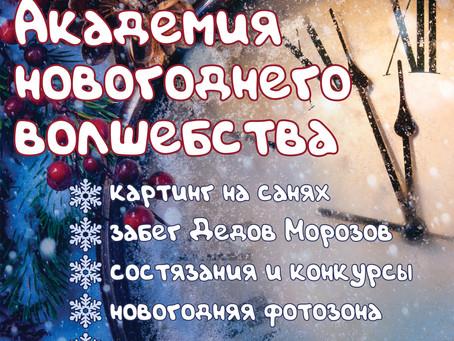 Новогодняя праздничная уличная программа «Академия новогоднего волшебства».