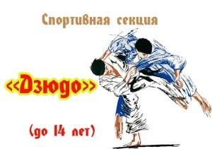 """Спортивная секция """"Дзюдо"""""""