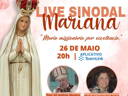 Missionários Sinodais participam de Live Mariana