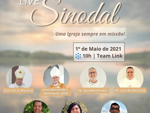 Missionários Sinodais participam de videoconferência temática