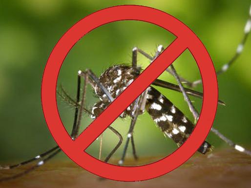 Chuvas atípicas e falta de cuidados da população dificultam combate à dengue em JF