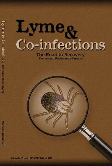 Lyme & Co-infections, the Road to Recovery (Condensed Pocketbook Version)