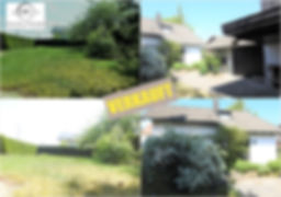 Collage 2018-09-12 17_25_08.jpg