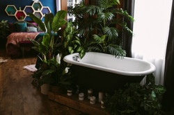 Studio B - Claw Foot Tub