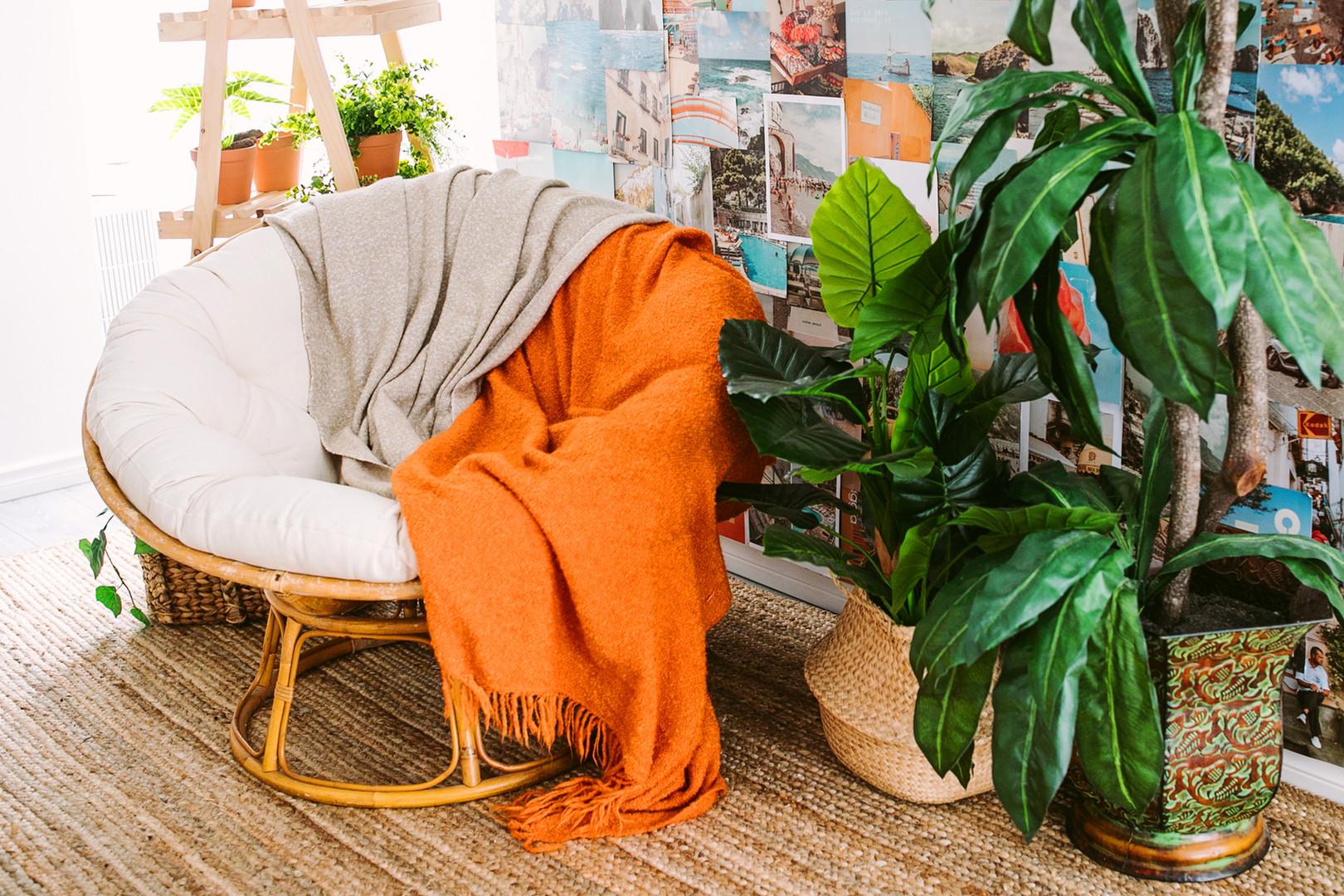 Studio D - Papazan Chair + Montage Backd