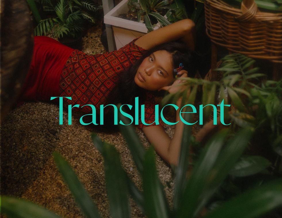 Translucent2-04.png